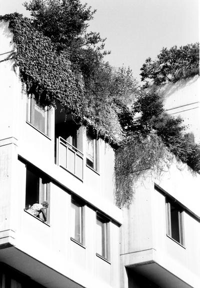 Terrassenhaussiedlung Graz